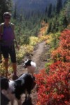 Sophie's Clinic: Hike with Dogs