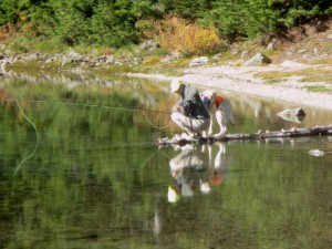 Autumn hike to Summit Lake in the Clearwater Wilderness